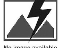 Canapé 3 places couleur marron avec ses 5 coussins