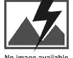 Table, fers plats plateau en chêne, avec pieds en X